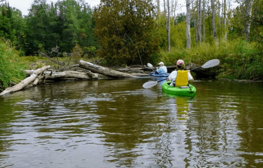 sixty lakes area hale michigan